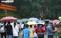 Du khách nườm nượp đội mưa đổ về Đền Hùng trong ngày khai hội