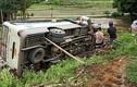 Xe khách Tâm Đạt lật xuống ruộng, 6 người thoát nạn