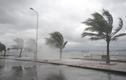 Bão Conson tương tác với bão Chanthu, đường đi rất phức tạp