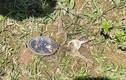 Phát hiện thi thể người phụ nữ khoảng 30 tuổi ở bãi bồi ven sông