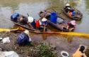 Clip: Dân Hải Phòng liều mình tay trần vớt hóa chất lạ trên sông