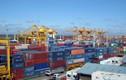 Lãnh đạo Hải Phòng nói về việc thu phí cảng biển gây tranh cãi