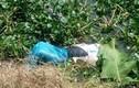 Xác định nghi can giết người phi tang xác xuống sông ở Hải Dương
