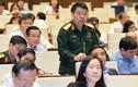 ĐBQH lo thương nhân Trung Quốc mua hết dược liệu tự nhiên Việt Nam