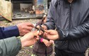 """Nổ lớn ở Bắc Ninh: Điều tra việc """"mua phế liệu từ Trung tâm xử lý bom mìn"""""""