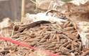 Hưng Yên: Hoàn tất di dời 6 tấn đầu đạn trong bãi phế liệu