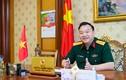 Vụ án Út trọc: Khởi tổ TGĐ Tổng công ty Thái Sơn Phùng Danh Thắm