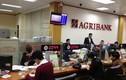 Hàng loạt khách mất tiền tại Agribank: Phó Thống đốc NHNN nói gì?