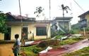 Dông lốc khủng khiếp ở Quảng Ngãi khiến 117 căn nhà bị thiệt hại