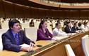 Quốc hội biểu quyết thông qua Luật Cảnh sát biển Việt Nam
