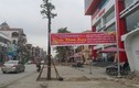 """Kỳ lạ hàng cây xanh trồng """"dưới lòng đường"""" ở Uông Bí"""