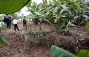 Liên tiếp phát hiện xác chết trôi sông ở Thái Bình