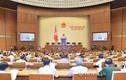 Quốc hội thảo luận ở tổ Luật Cán bộ, công chức và Luật Viên chức