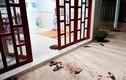 Vợ không nấu cơm, chồng sát hại: Độc ác cỡ nào?