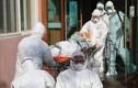 Hàn Quốc bùng phát dịch SARS-CoV-2, sinh viên, người lao động Việt sẽ ra sao?