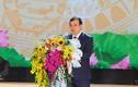 Lùm xùm điều động Bí thư Kinh Môn làm GĐ Sở VHTTDL Hải Dương: Bộ Nội vụ nói gì?