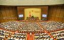 Khai mạc kỳ họp thứ 9, Quốc hội khóa 14: Thủ tướng báo cáo phòng dịch COVID-19
