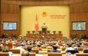 302 đại biểu Quốc hội bác việc tách Luật Giao thông đường bộ