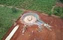 Dự án điện gió Gia Lai sử dụng lao động nước ngoài không phép: Trách nhiệm chủ đầu tư?