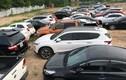 Cận cảnh gần 100 xe ô tô liên quan đường dây trộm cắp, tiêu thụ xe gian