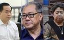 Vì sao khó thu hồi tài sản đại án Phan Văn Anh Vũ, Phạm Công Danh…?