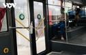 Hà Nội: Hành khách đi xe buýt phải có thẻ xanh/thẻ vàng