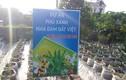 Bất thường dự án trồng cây nha đam của Cty Biobee Việt Pháp