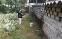 Thanh Hóa xóa rừng phòng hộ làm du lịch: Dân phản đối kịch liệt, huyện vẫn cố thu hồi