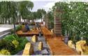 Royal City chi 30 tỷ xây dựng vườn dưỡng sinh Nhật Bản