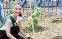 Hà Thu tạm dẫn đầu bình chọn giải Hoa hậu ảnh của Miss Earth