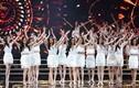 Bộ Văn hóa đề nghị hoãn tổ chức Hoa hậu Hoàn vũ VN 2017