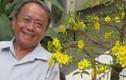Nhạc sĩ Nguyễn Hữu Phần qua đời ở tuổi 70