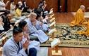 Con gái và nghệ sĩ làm lễ tưởng nhớ Phi Nhung ở Mỹ