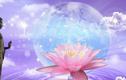 Phật dạy: Người bất khả chiến bại là người làm được điều này