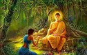 Phật dạy: Phúc đức tại mẫu, 3 điều nên làm để tích đức cho con