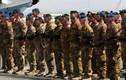 NATO tiếp tục bất lực trước tình hình Ukraine và Iraq
