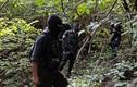 Mexico: Phát hiện mộ tập thể nghi của 43 sinh viên mất tích