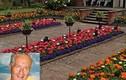 Bị ung thư, sếp ngân hàng quyên hết tài sản...trồng hoa