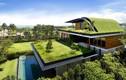 Nhà Việt Nam lọt top nhà mái xanh độc đáo nhất TG