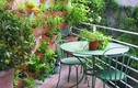 Gợi ý tạo khu vườn mini trang trí ban công nhà đẹp