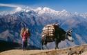 Tiết lộ những bí mật gây choáng về Nepal