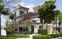 Biệt thự xanh tuyệt đẹp ở Sài Gòn hút hồn báo Anh