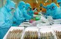 Top 100 đại gia thủy sản lớn nhất thế giới vinh danh DN Việt