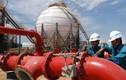 Ưu đãi khủng, lỗ lớn của nhà máy lọc dầu Dung Quất