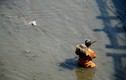 Nghề vớt giun hổ mưu sinh trên dòng sông bốc mùi