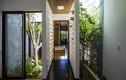Ngôi nhà ở Đà Nẵng giống khu vườn nổi bật trên báo ngoại