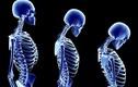 Những sự thật kỳ thú về cơ thể con người