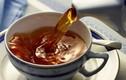 Điều tồi tệ gì xảy ra khi bạn uống trà lúc đói bụng