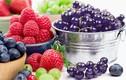 10 loại quả càng ăn càng đốt mỡ bụng nhanh