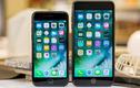 iPhone 7, 7 Plus giá từ 7,6 triệu... và cách test máy trước khi mua